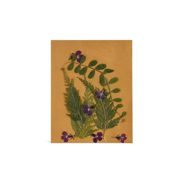 Blüten und Blätter,  gepresst, grün