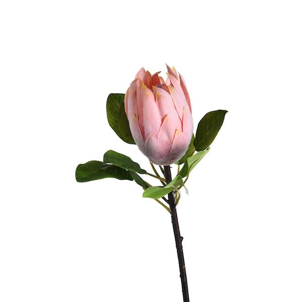 Kunstblume Protea, rosa