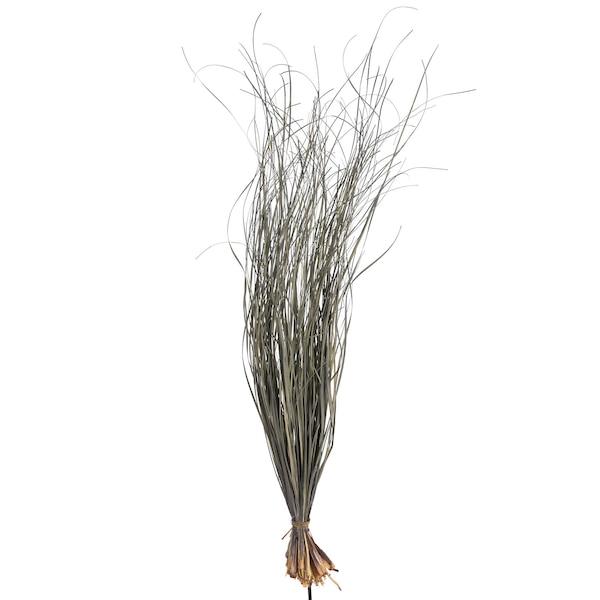 Bündel Gras, grau