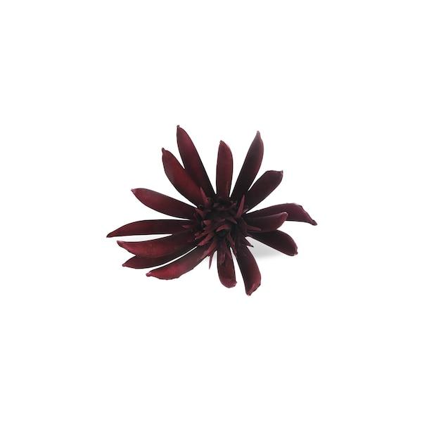 Kaktusblüte auf Clip, bordeaux