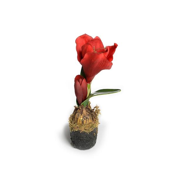 Kunstpflanze Amaryllis in Erde, bordeaux