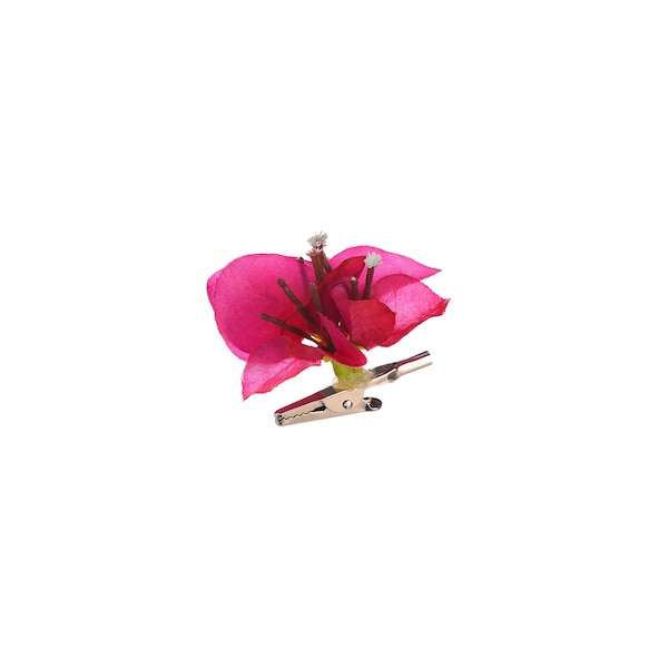 Blüte an Clip, Bougainville, pink