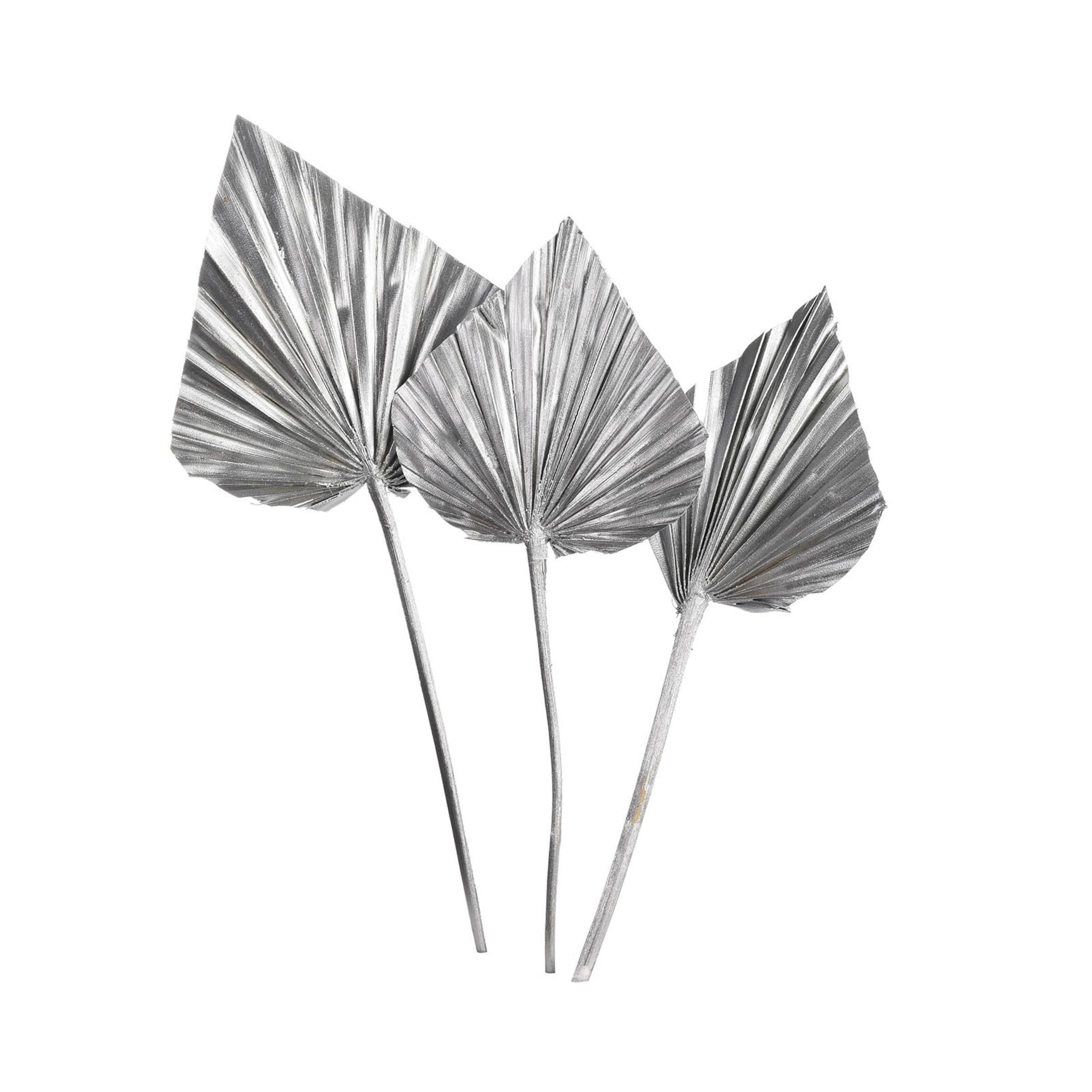Trockenblume Palmleaf ca.40cm 3S, silber