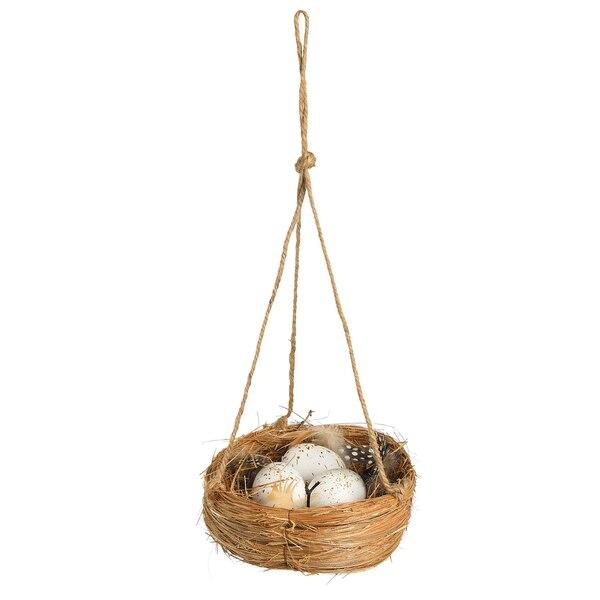 Nest mit Eiern, natur