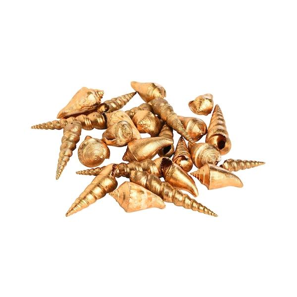 Muscheln, gold