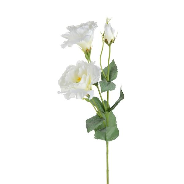 Kunstblume Lisanthus, weiß