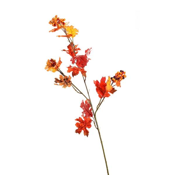 Zweig Eichenblatt, rot