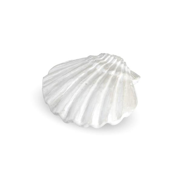 Objet décoratif coquillage, blanc cassé