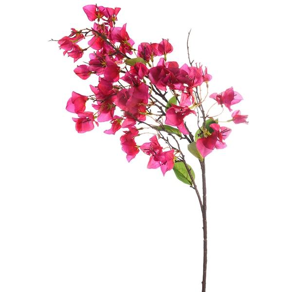 Zweig Bouganville, pink
