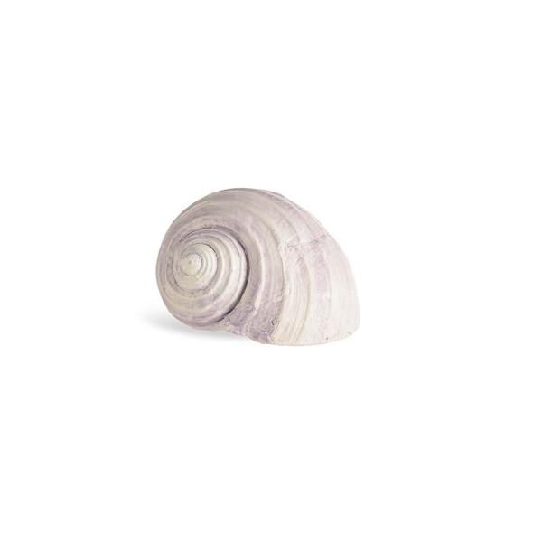 Dekoobjekt Schneckenmuschel, hellflieder