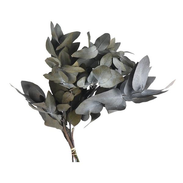 Blumenbündel Eukalyptus, getrocknet, grün