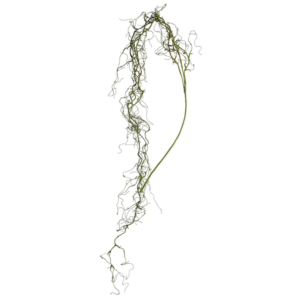 Girlande Wurzel, grün