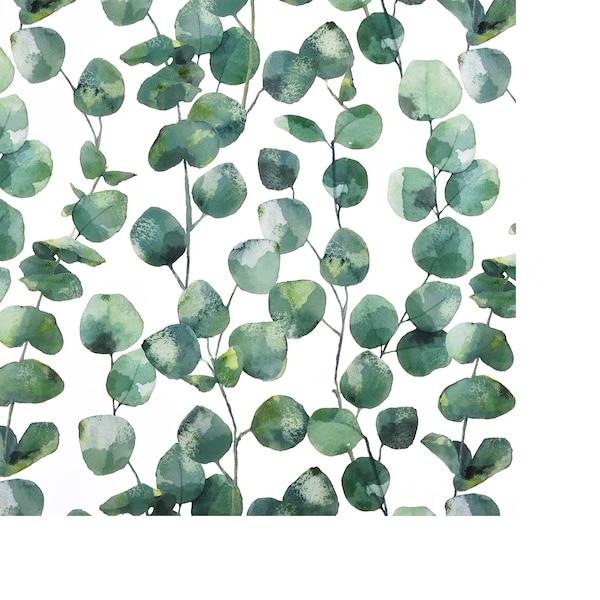 Kraftpapier Eukalyptus, grün