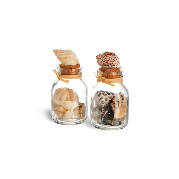 Muschelmix im Glas, natur