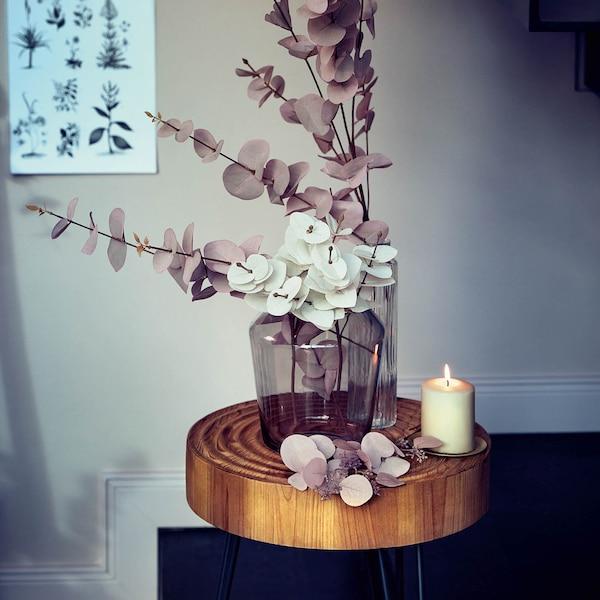 Rêve d'eucalyptus