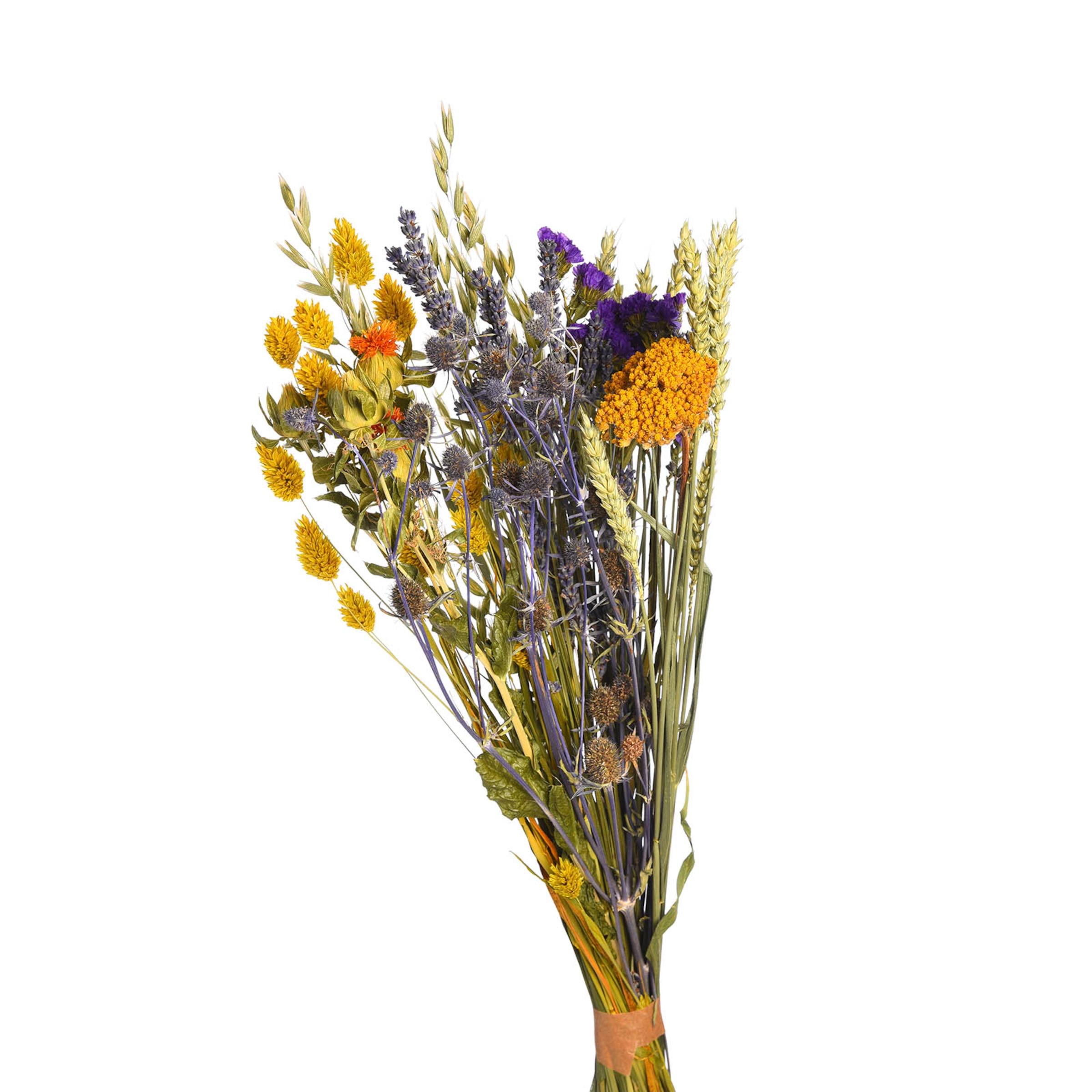 Trockenblumen Bouquet ca.45cm, bunt